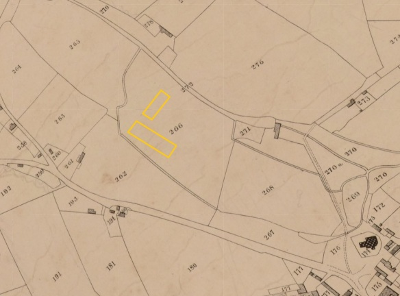 Tithe map of 1840 with position of Marlborough Primary School marked in yellow - in field 266.