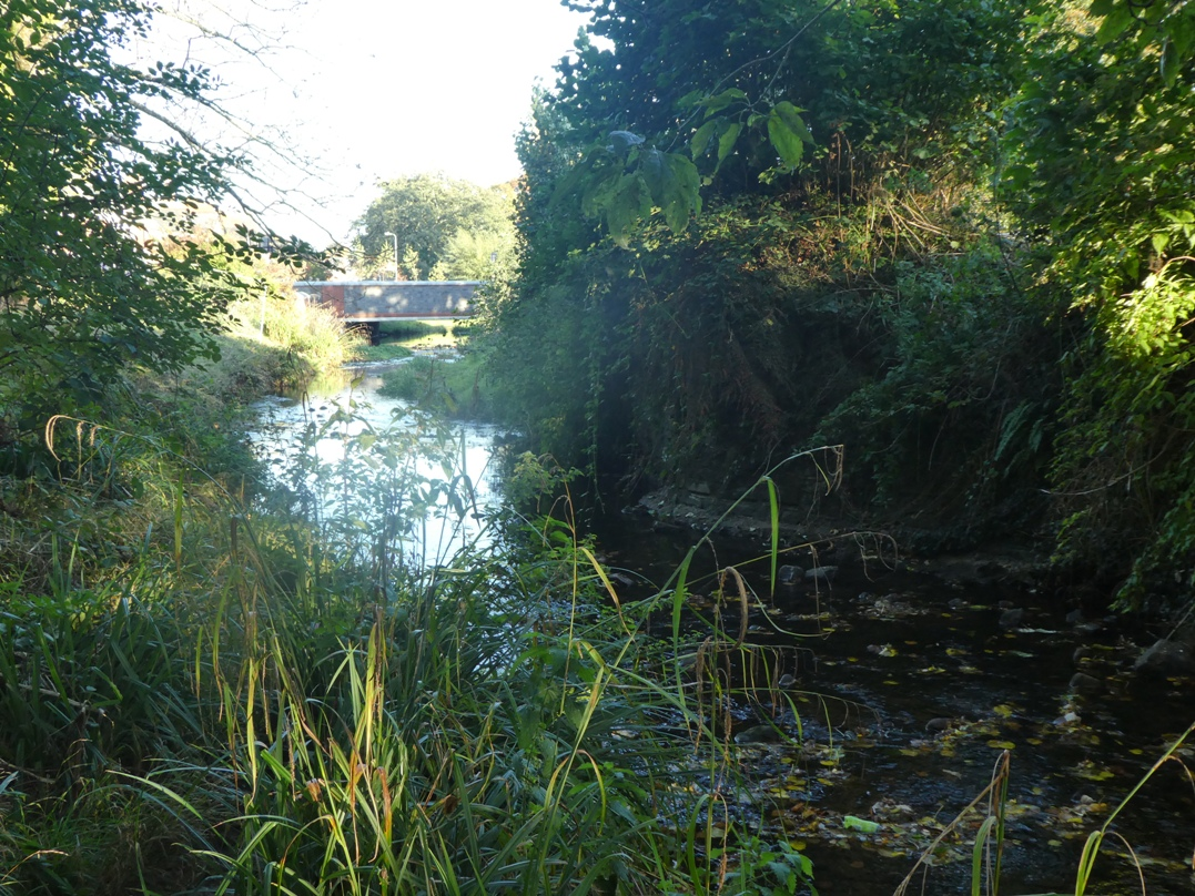 Roath Brook and remains of Roath Mill