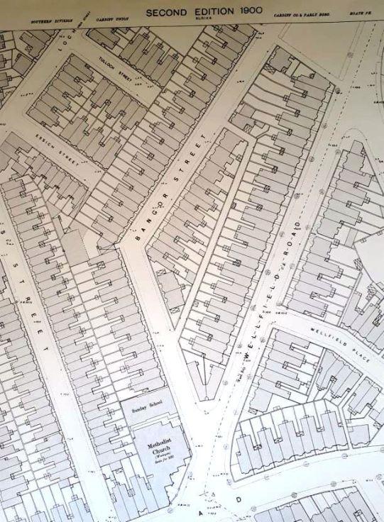 Wellfield Road, Roath, Cardiff map 1900