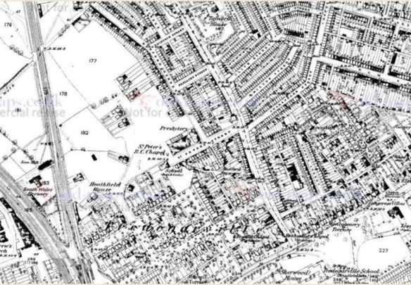 1880 map of lower Castle Road, Roath, Cardiff