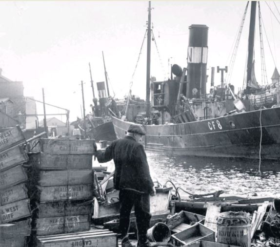 Neale and West trawlers and fish boxes in Cardiff